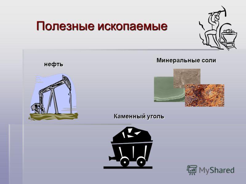 Полезные ископаемые нефть Каменный уголь Минеральные соли