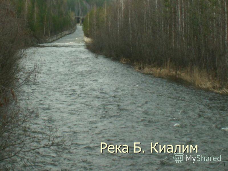 Река Б. Киалим