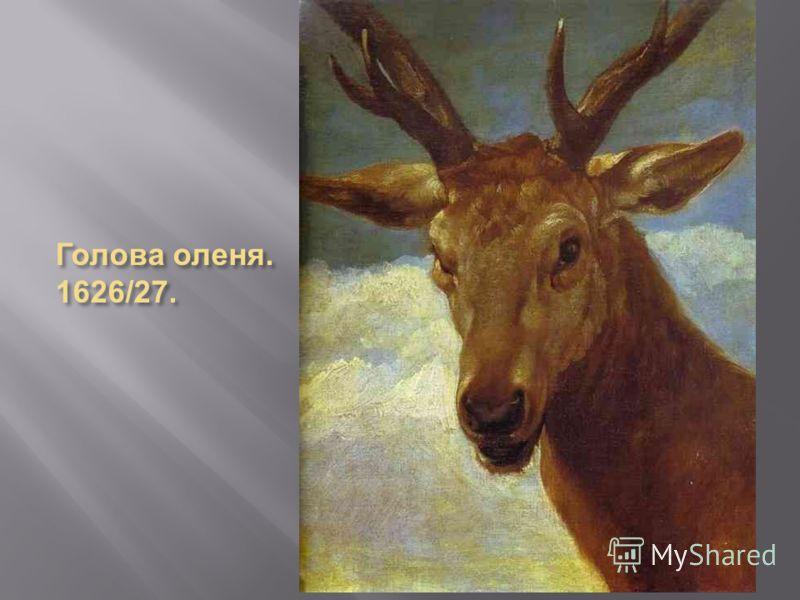 Голова оленя. 1626/27.