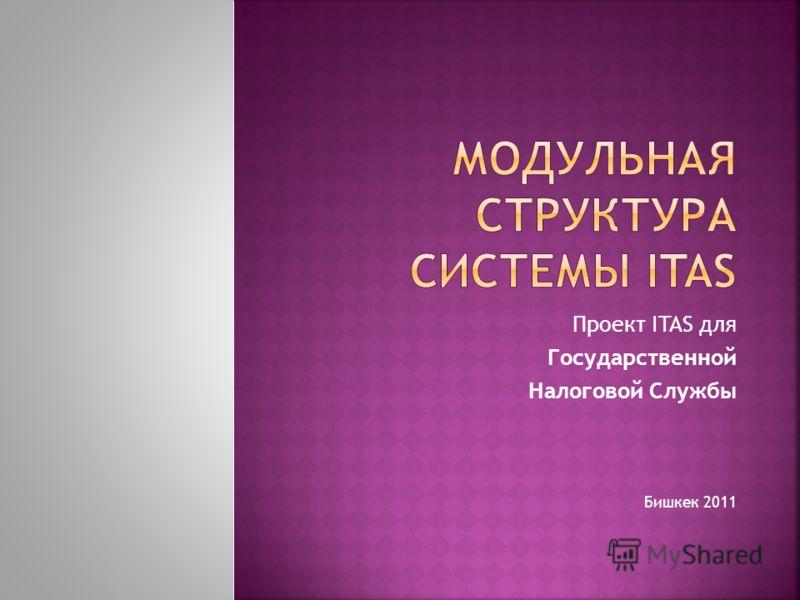 Проект ITAS для Государственной Налоговой Службы Бишкек 2011