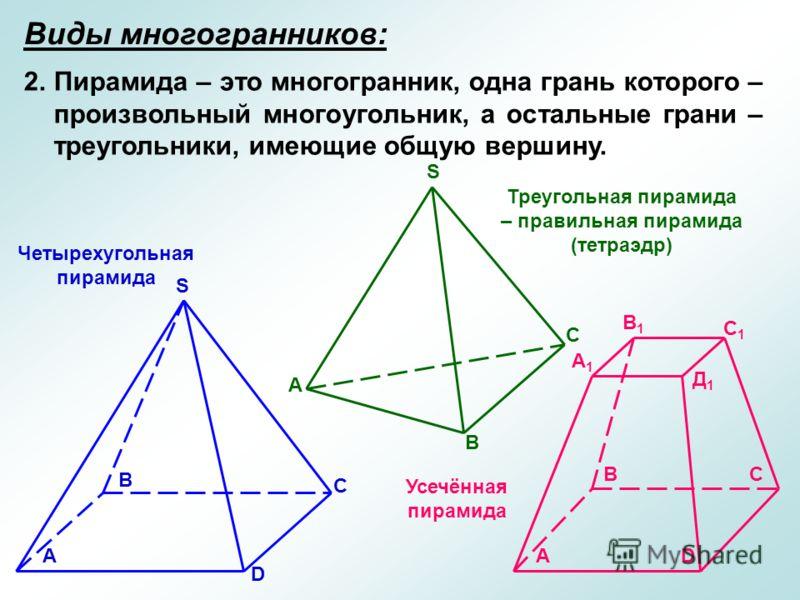 Виды многогранников: 2.Пирамида – это многогранник, одна грань которого – произвольный многоугольник, а остальные грани – треугольники, имеющие общую вершину. А В С D S S А В С Четырехугольная пирамида Усечённая пирамида Треугольная пирамида – правил