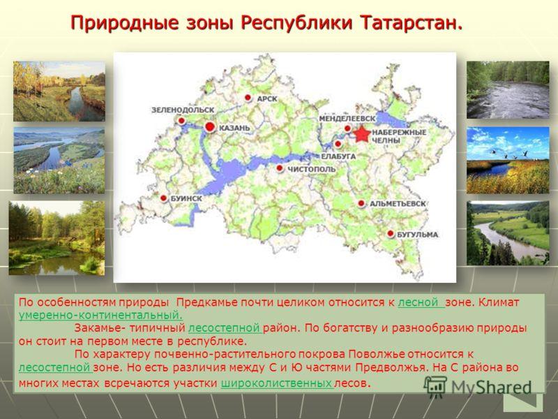 Природные зоны Республики Татарстан. По особенностям природы Предкамье почти целиком относится к _______зоне. Климат ___________________. Закамье- типичный______________район. По богатству и разнообразию природы он стоит на первом месте в республике.
