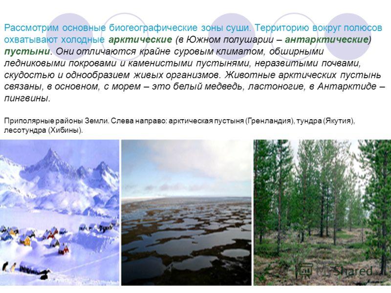 Рассмотрим основные биогеографические зоны суши. Территорию вокруг полюсов охватывают холодные арктические (в Южном полушарии – антарктические) пустыни. Они отличаются крайне суровым климатом, обширными ледниковыми покровами и каменистыми пустынями,