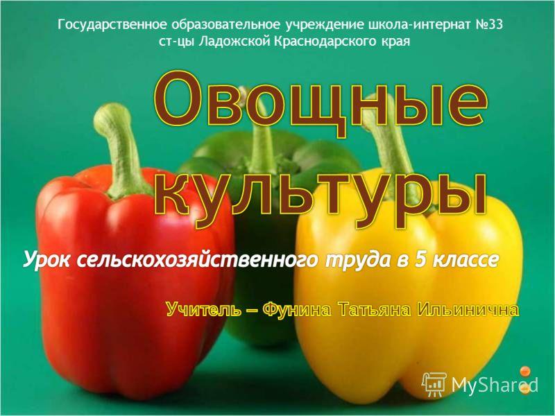 Государственное образовательное учреждение школа-интернат 33 ст-цы Ладожской Краснодарского края