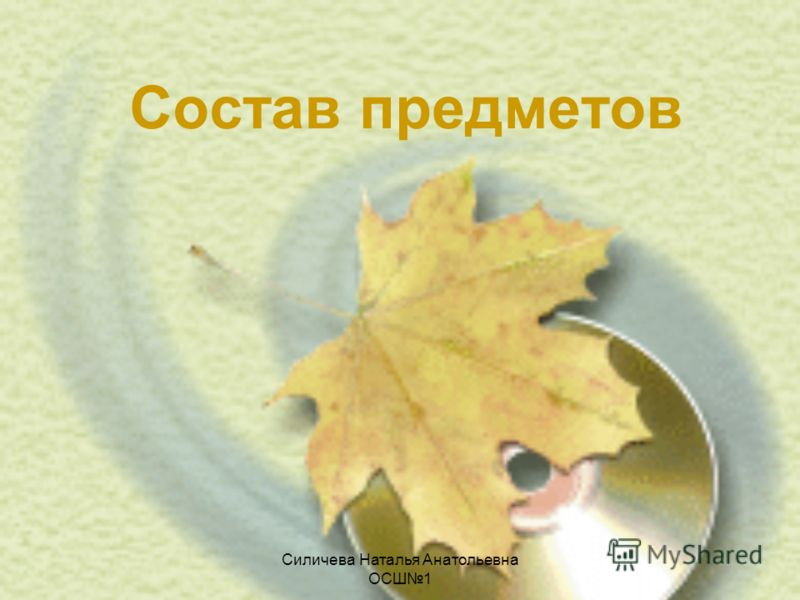 Силичева Наталья Анатольевна ОСШ1 Состав предметов