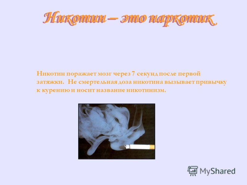 Никотин – это наркотик Никотин – это наркотик Никотин поражает мозг через 7 секунд после первой затяжки. Не смертельная доза никотина вызывает привычку к курению и носит название никотинизм.