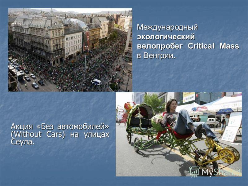 Международный экологический велопробег Critical Mass в Венгрии. Акция «Без автомобилей» (Without Cars) на улицах Сеула.