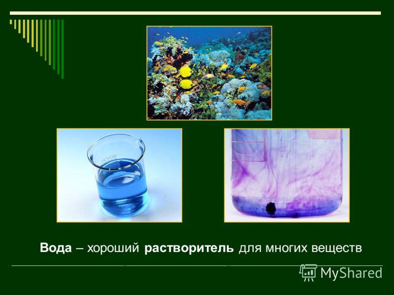 Вода – хороший растворитель. В ней растворяются твёрдые, жидкие и газообразные вещества. Вода – хороший растворитель для многих веществ