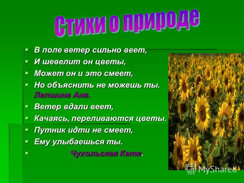 В поле ветер сильно веет, В поле ветер сильно веет, И шевелит он цветы, И шевелит он цветы, Может он и это смеет, Может он и это смеет, Но объяснить не можешь ты. Лапшина Аня. Но объяснить не можешь ты. Лапшина Аня. Ветер вдали веет, Ветер вдали веет