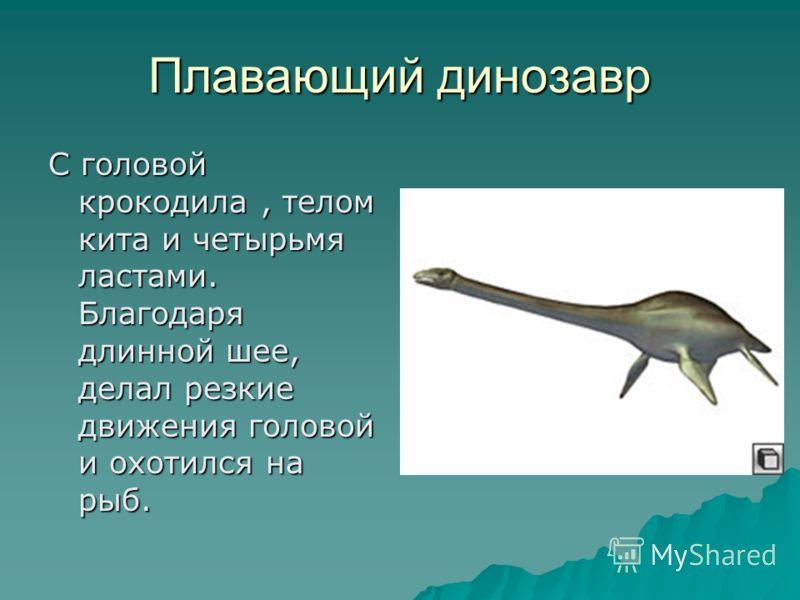 Плавающий динозавр С головой крокодила, телом кита и четырьмя ластами. Благодаря длинной шее, делал резкие движения головой и охотился на рыб.