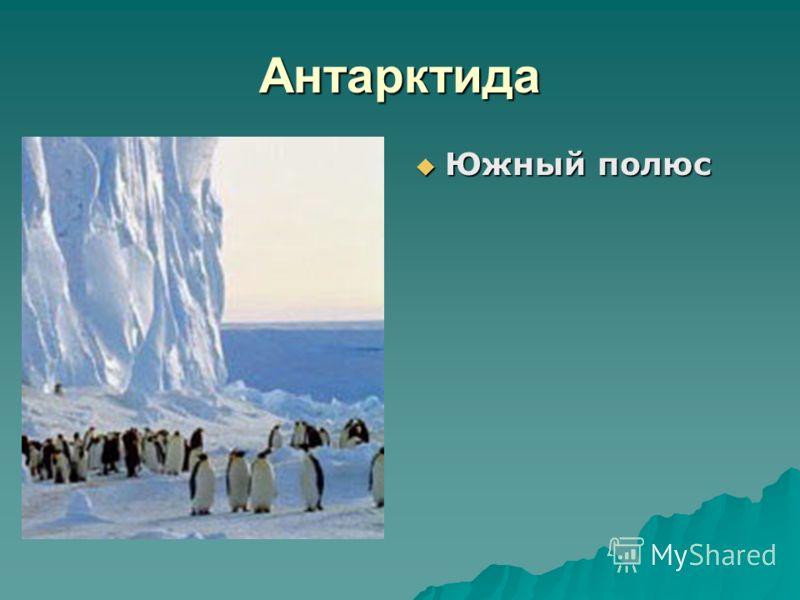 Антарктида Южный полюс Южный полюс