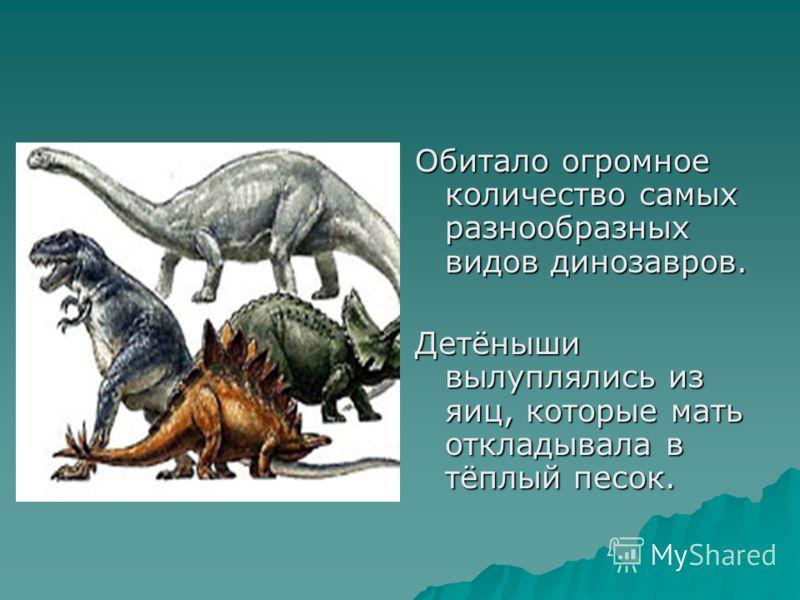 Обитало огромное количество самых разнообразных видов динозавров. Детёныши вылуплялись из яиц, которые мать откладывала в тёплый песок.