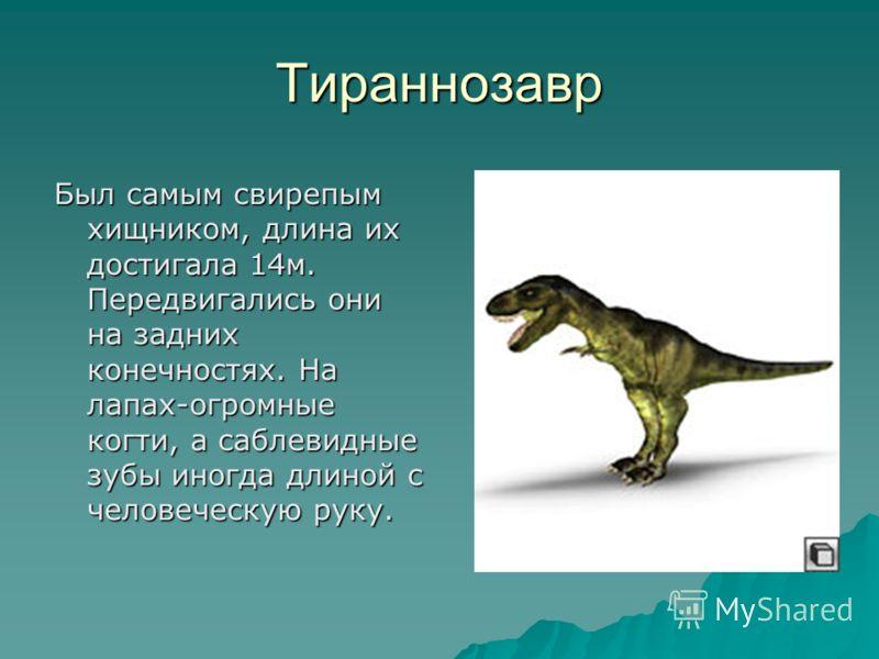 Тираннозавр Был самым свирепым хищником, длина их достигала 14м. Передвигались они на задних конечностях. На лапах-огромные когти, а саблевидные зубы иногда длиной с человеческую руку.