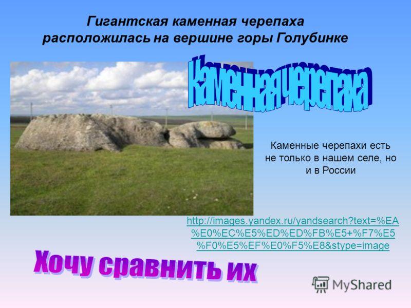 Гигантская каменная черепаха расположилась на вершине горы Голубинке Каменные черепахи есть не только в нашем селе, но и в России http://images.yandex.ru/yandsearch?text=%EA %E0%EC%E5%ED%ED%FB%E5+%F7%E5 %F0%E5%EF%E0%F5%E8&stype=image