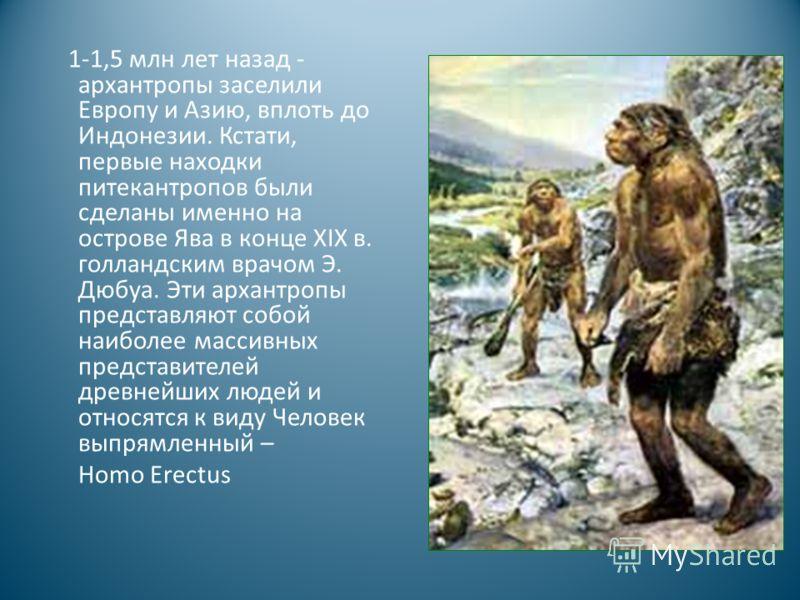 1-1,5 млн лет назад - архантропы заселили Европу и Азию, вплоть до Индонезии. Кстати, первые находки питекантропов были сделаны именно на острове Ява в конце XIX в. голландским врачом Э. Дюбуа. Эти архантропы представляют собой наиболее массивных пре