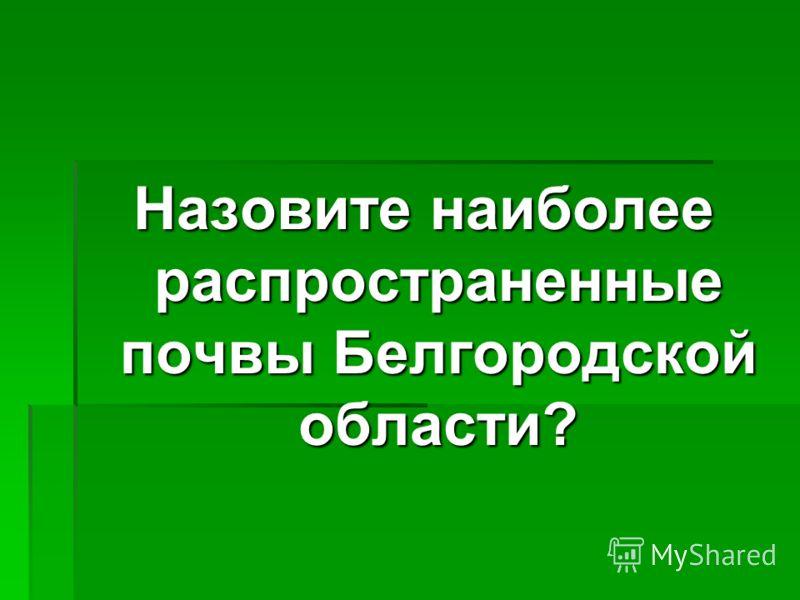 Назовите наиболее распространенные почвы Белгородской области?