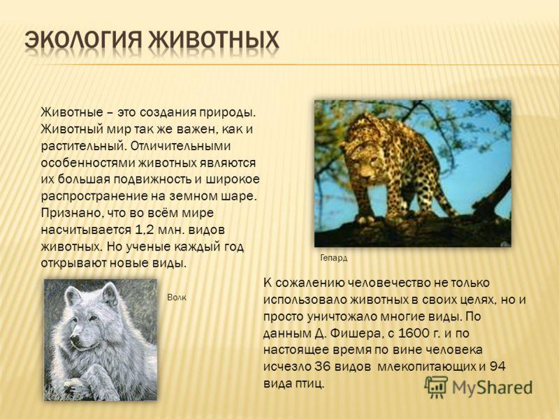 Животные – это создания природы. Животный мир так же важен, как и растительный. Отличительными особенностями животных являются их большая подвижность и широкое распространение на земном шаре. Признано, что во всём мире насчитывается 1,2 млн. видов жи