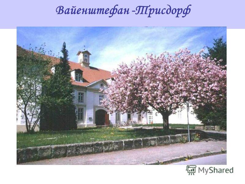 Вайенштефан -Трисдорф