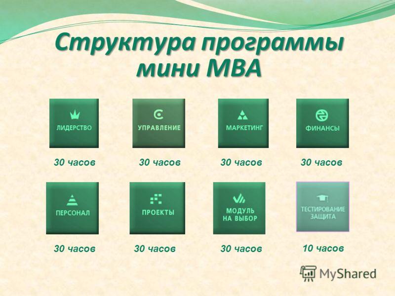 Структура программы мини МВА 30 часов 10 часов 30 часов