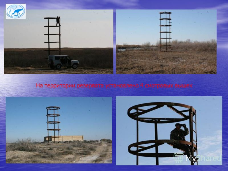 На территории резервата установлено 4 смотровых вышек