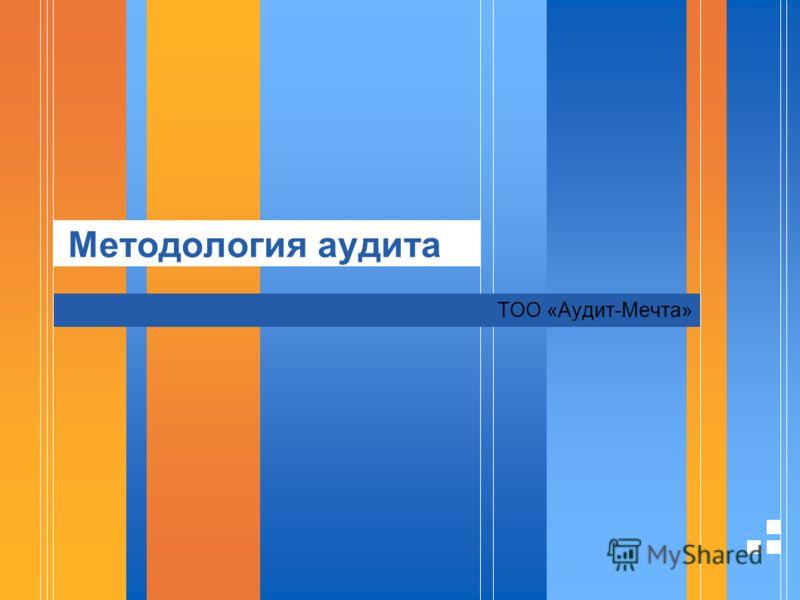 Методология аудита ТОО «Аудит-Мечта»