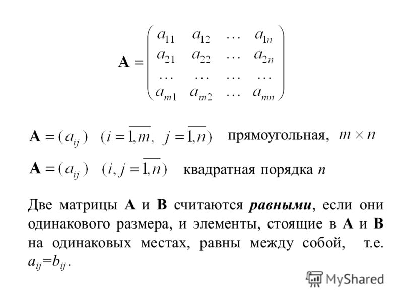 прямоугольная, квадратная порядка n Две матрицы A и B считаются равными, если они одинакового размера, и элементы, стоящие в A и B на одинаковых местах, равны между собой, т.е. a ij =b ij.