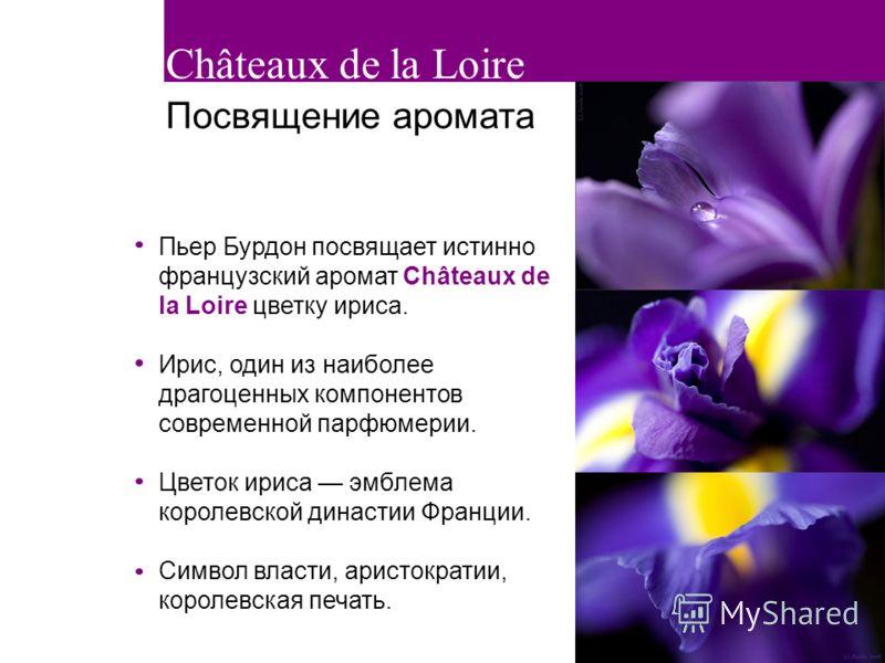 3 Пьер Бурдон посвящает истинно французский аромат Châteaux de la Loire цветку ириса. Ирис, один из наиболее драгоценных компонентов современной парфюмерии. Цветок ириса эмблема королевской династии Франции. Символ власти, аристократии, королевская п