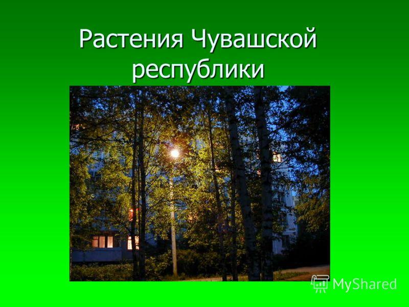 Растения Чувашской республики