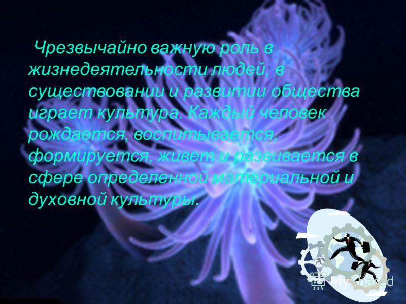 Работу выполнили ученицы 11 «В» класса Горбунова А. Затеева К. Руководитель учитель по обществознанию Горбунов И.А.