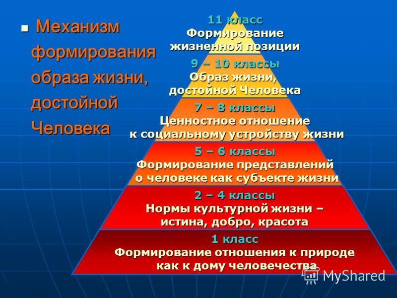 Механизм формирования образа жизни, достойной Человека 11 класс Формирование жизненной позиции 9 – 10 классы Образ жизни, достойной Человека 7 – 8 классы Ценностное отношение к социальному устройству жизни к социальному устройству жизни 5 – 6 классы