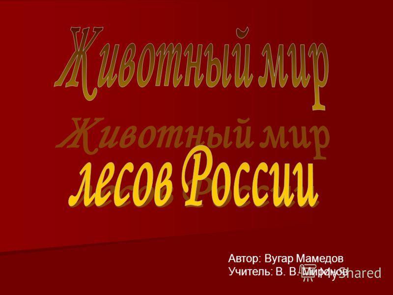 Автор: Вугар Мамедов Учитель: В. В. Миронов