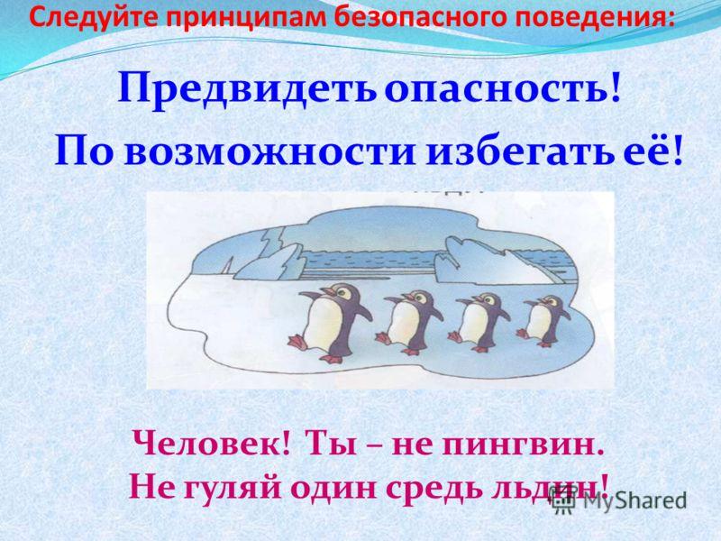 Следуйте принципам безопасного поведения: Предвидеть опасность! По возможности избегать её! Человек! Ты – не пингвин. Не гуляй один средь льдин!