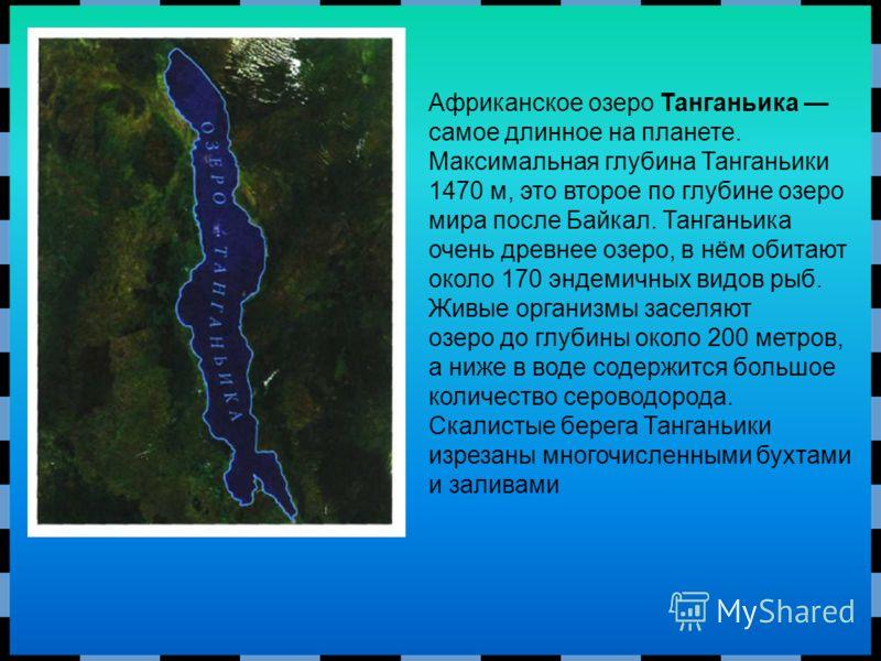Африканское озеро Танганьика самое длинное на планете. Максимальная глубина Танганьики 1470 м, это второе по глубине озеро мира после Байкал. Танганьика очень древнее озеро, в нём обитают около 170 эндемичных видов рыб. Живые организмы заселяют озеро