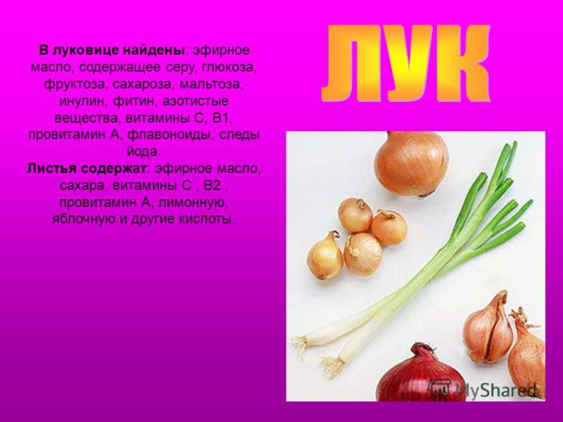 В луковице найдены: эфирное масло, содержащее серу, глюкоза, фруктоза, сахароза, мальтоза, инулин, фитин, азотистые вещества, витамины С, B1, провитамин А, флавоноиды, следы йода. Листья содержат: эфирное масло, сахара, витамины С, В2, провитамин А,