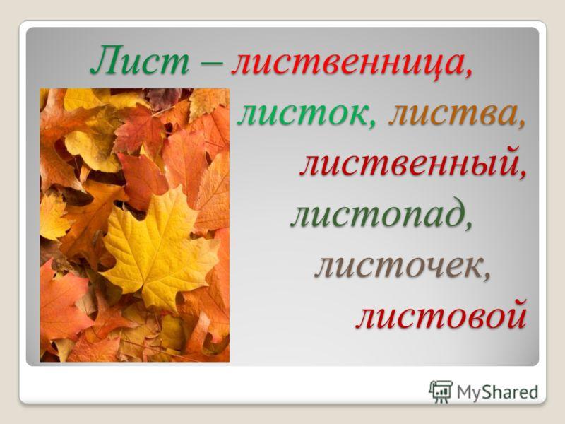 Лист – лиственница, листок, листва, лиственный, листопад, листочек, листовой