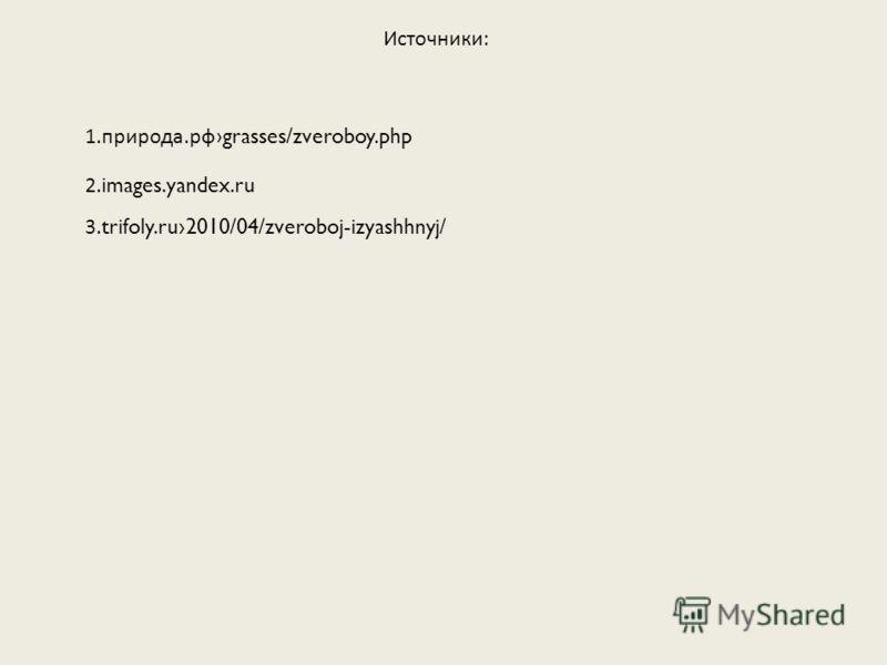 Источники: 3. trifoly.ru2010/04/zveroboj-izyashhnyj/ 1.природа.рф grasses/zveroboy.php 2. images.yandex.ru