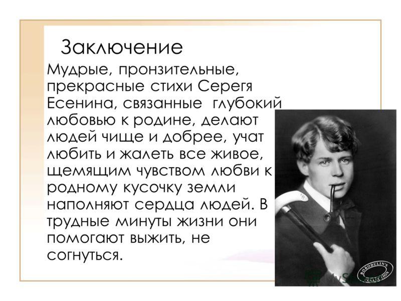 Заключение Мудрые, пронзительные, прекрасные стихи Серегя Есенина, связанные глубокий любовью к родине, делают людей чище и добрее, учат любить и жалеть все живое, щемящим чувством любви к родному кусочку земли наполняют сердца людей. В трудные минут