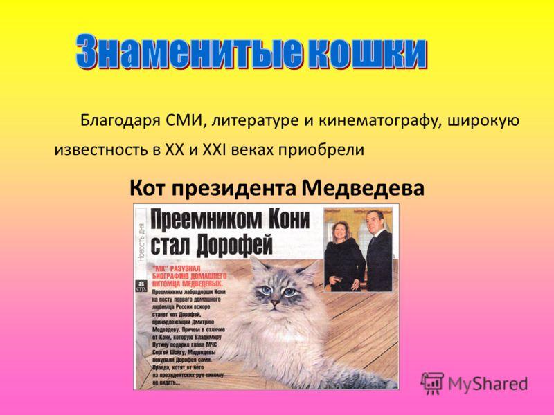 Благодаря СМИ, литературе и кинематографу, широкую известность в XX и XXI веках приобрели Кот президента Медведева