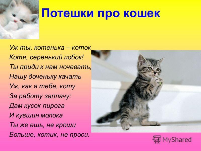 Потешки про кошек Уж ты, котенька – коток Котя, серенький лобок! Ты приди к нам ночевать, Нашу доченьку качать Уж, как я тебе, коту За работу заплачу: Дам кусок пирога И кувшин молока Ты же ешь, не кроши Больше, котик, не проси.