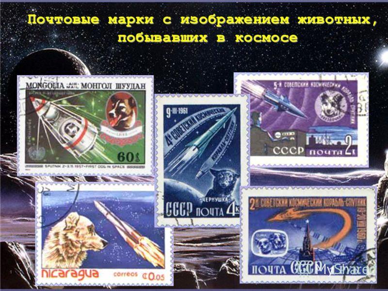 Почтовые марки с изображением животных, побывавших в космосе побывавших в космосе