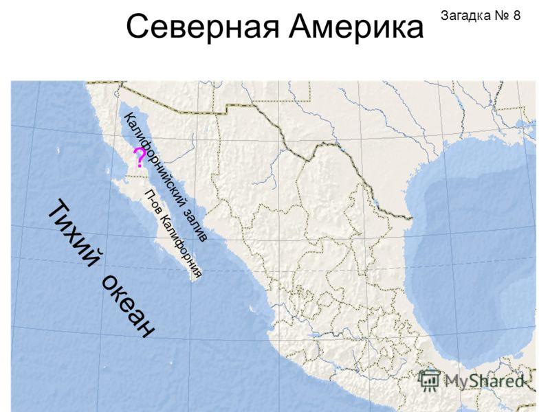 Северная Америка Тихий океан Калифорнийский залив П-ов Калифорния ? Загадка 8