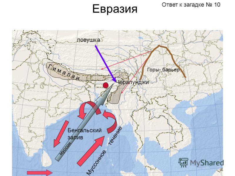 Евразия Горы- барьер Г и м а л а и Муссонное течение Бенгальский залив муссон Черапунджи ловушка Ответ к загадке 10