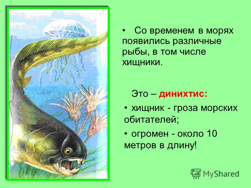 Это – динихтис: хищник - гроза морских обитателей; огромен - около 10 метров в длину! Со временем в морях появились различные рыбы, в том числе хищники.
