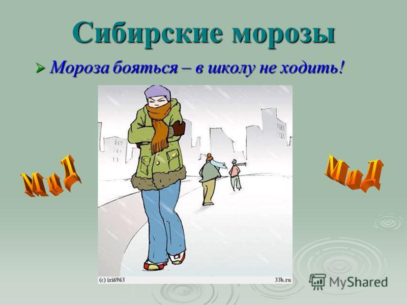 Сибирские морозы Мороза бояться – в школу не ходить!
