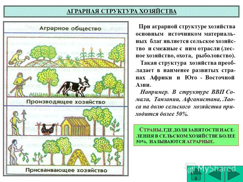 АГРАРНАЯ СТРУКТУРА ХОЗЯЙСТВА При аграрной структуре хозяйства основным источником материаль- ных благ является сельское хозяйс- тво и смежные с ним отрасли (лес- ное хозяйство, охота, рыболовство). Такая структура хозяйства преоб- ладает в наименее р