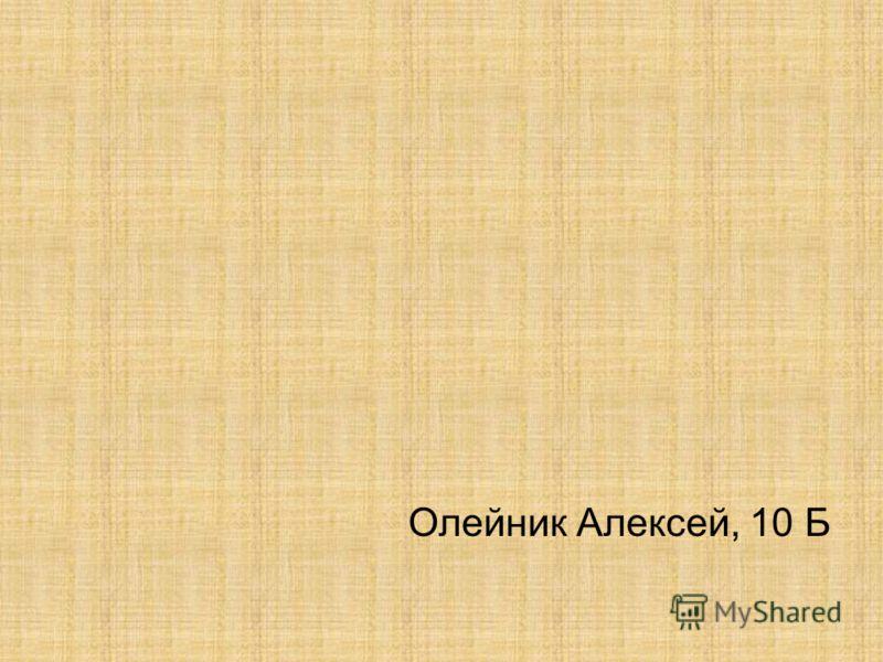 Олейник Алексей, 10 Б