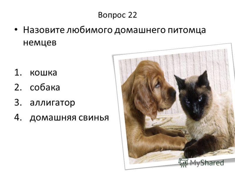 Вопрос 22 Назовите любимого домашнего питомца немцев 1. кошка 2. собака 3. аллигатор 4. домашняя свинья