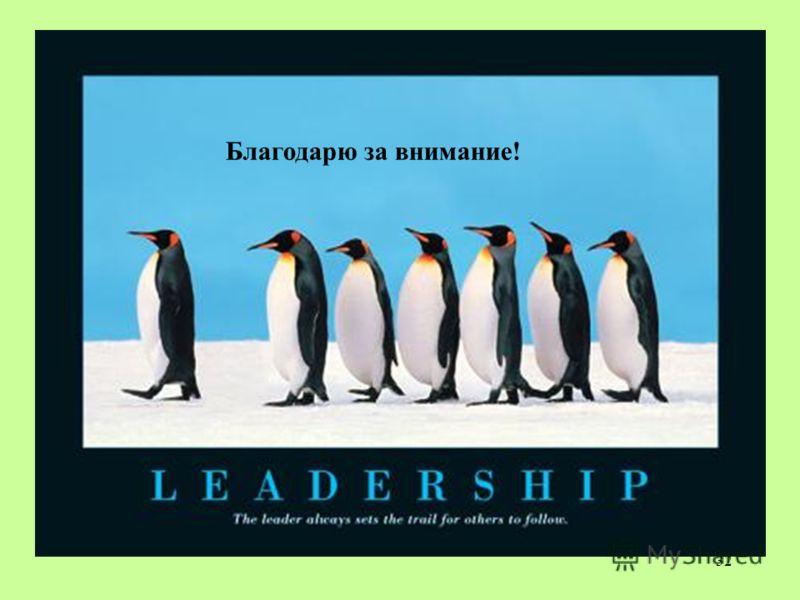 i am a leader because essay