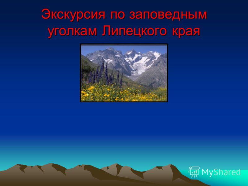 Экскурсия по заповедным уголкам Липецкого края
