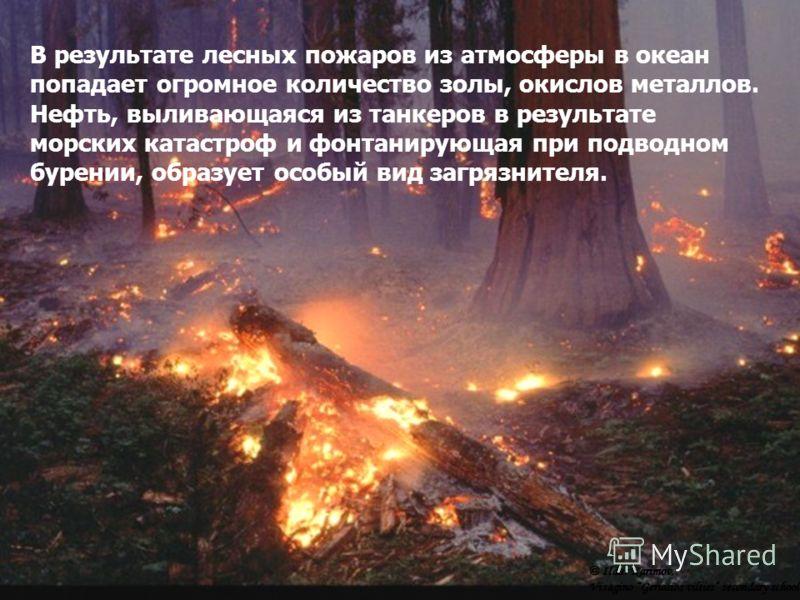 В результате лесных пожаров из атмосферы в океан попадает огромное количество золы, окислов металлов. Нефть, выливающаяся из танкеров в результате морских катастроф и фонтанирующая при подводном бурении, образует особый вид загрязнителя. © Ildar Kari